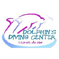 dolphins_center