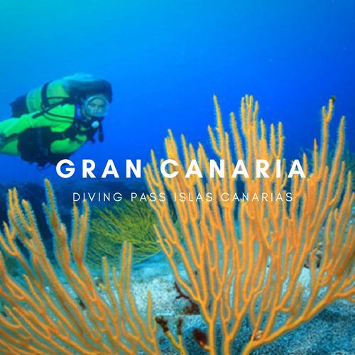 Diving pass Gran Canaria