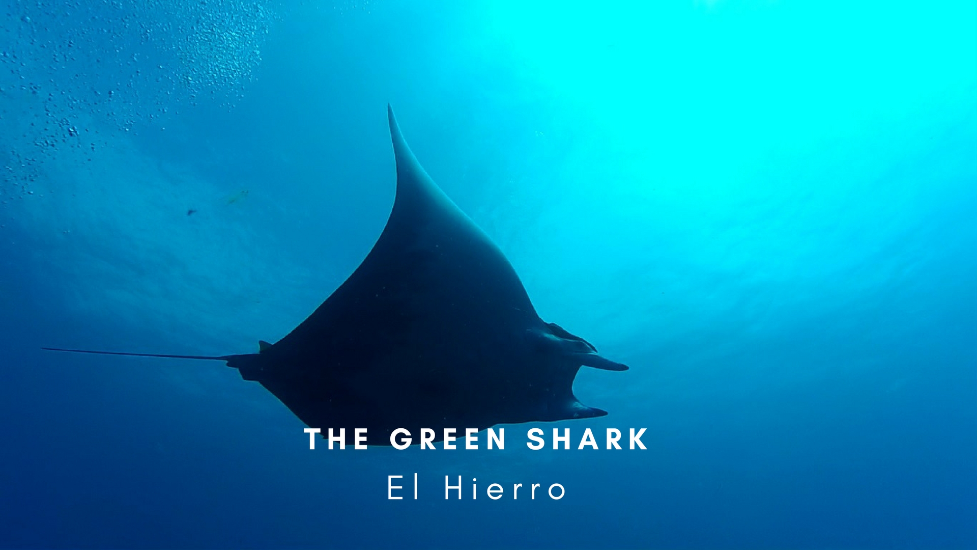 Green Shark El Hierro