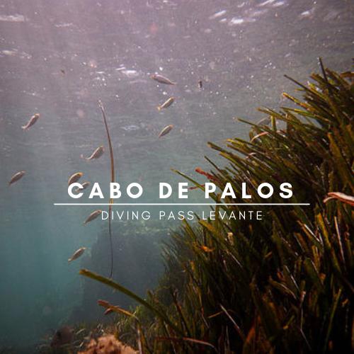 buceo Cabo de Palos