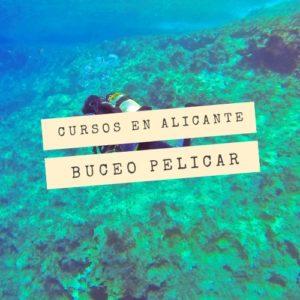 Open Water en Alicante con Buceo Pelicar